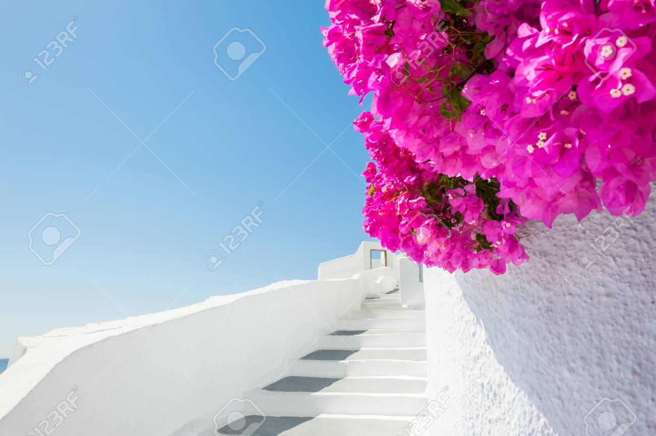 962c573ccff7 White Architecture And Pink Flowers