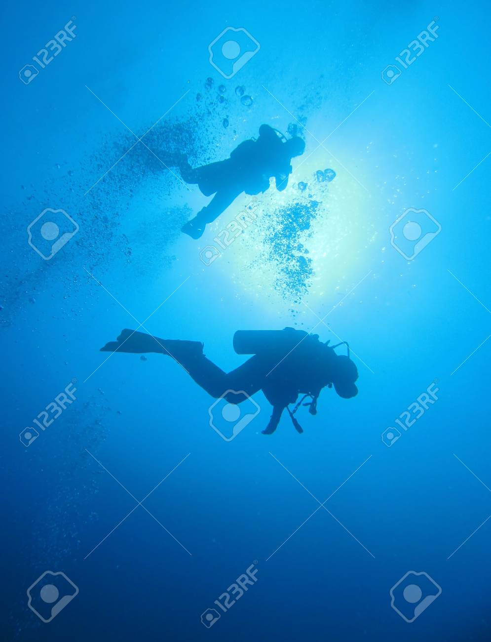 Scuba diving in the Red Sea, Egypt Stock Photo - 14203177
