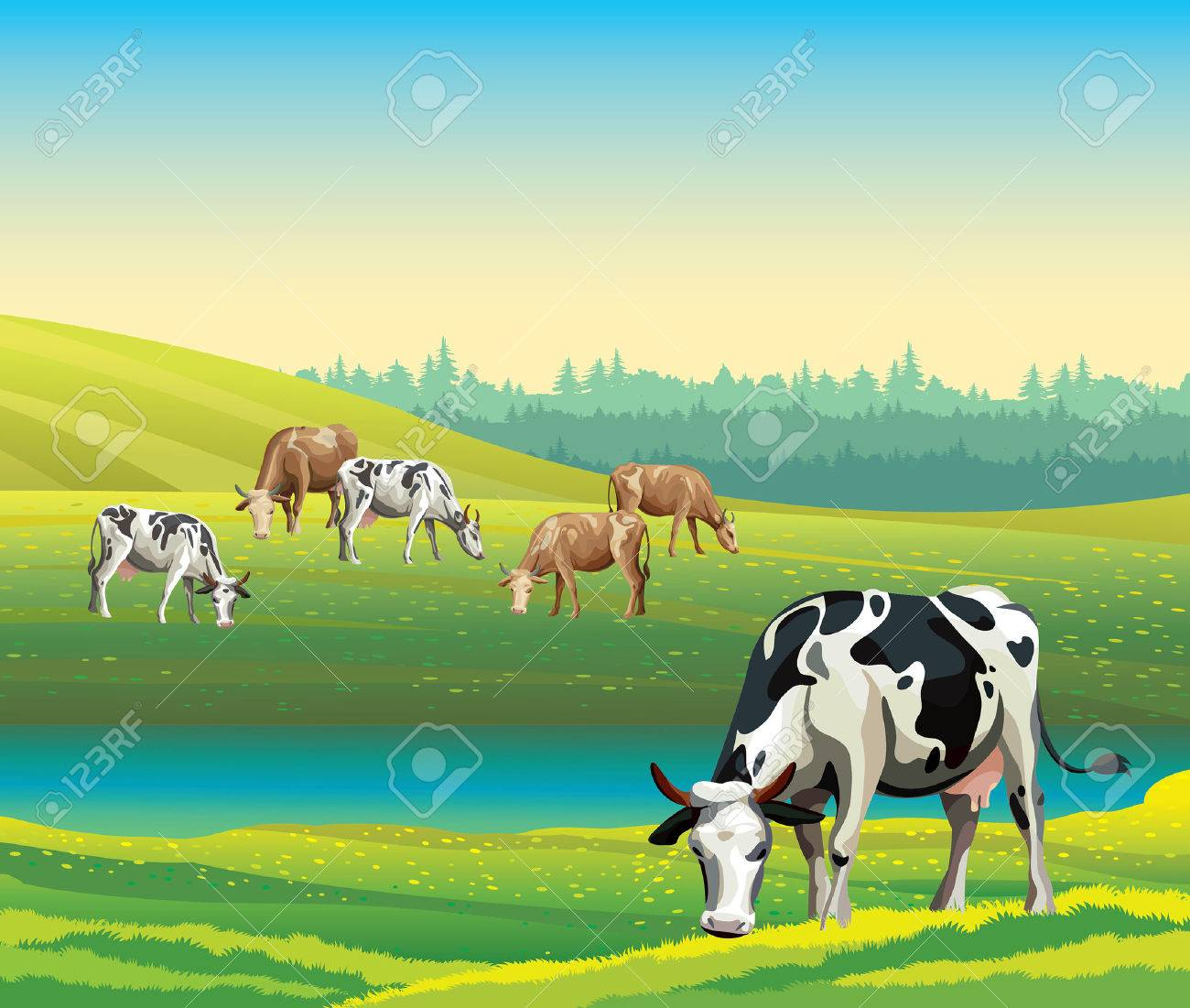 Rural summer landscape with cows and green meadow. Vector nature illustration. - 40933356