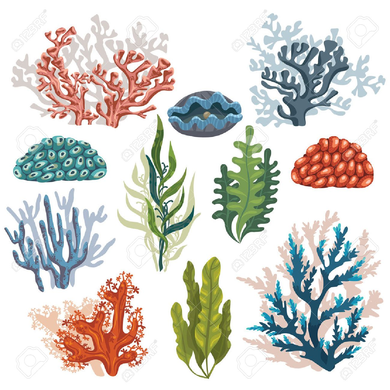 Set Of Cartoon Underwater Plants And Creatures Vector Isolated