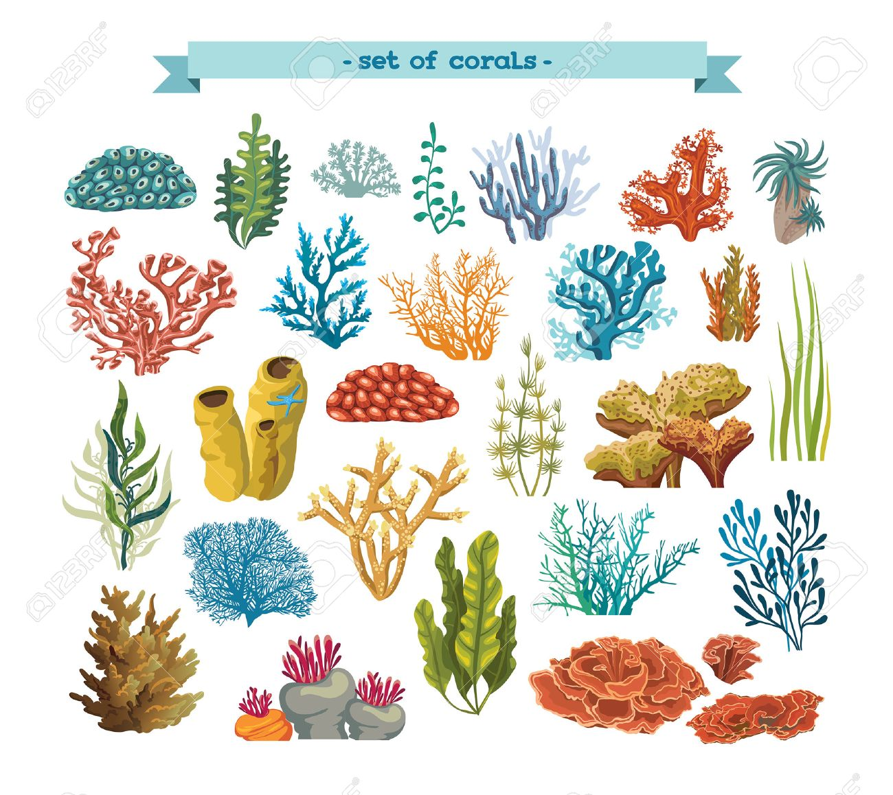 Set of isolated colorful corals and algaes on a white background. Vector underwater flora and fauna. - 49360593