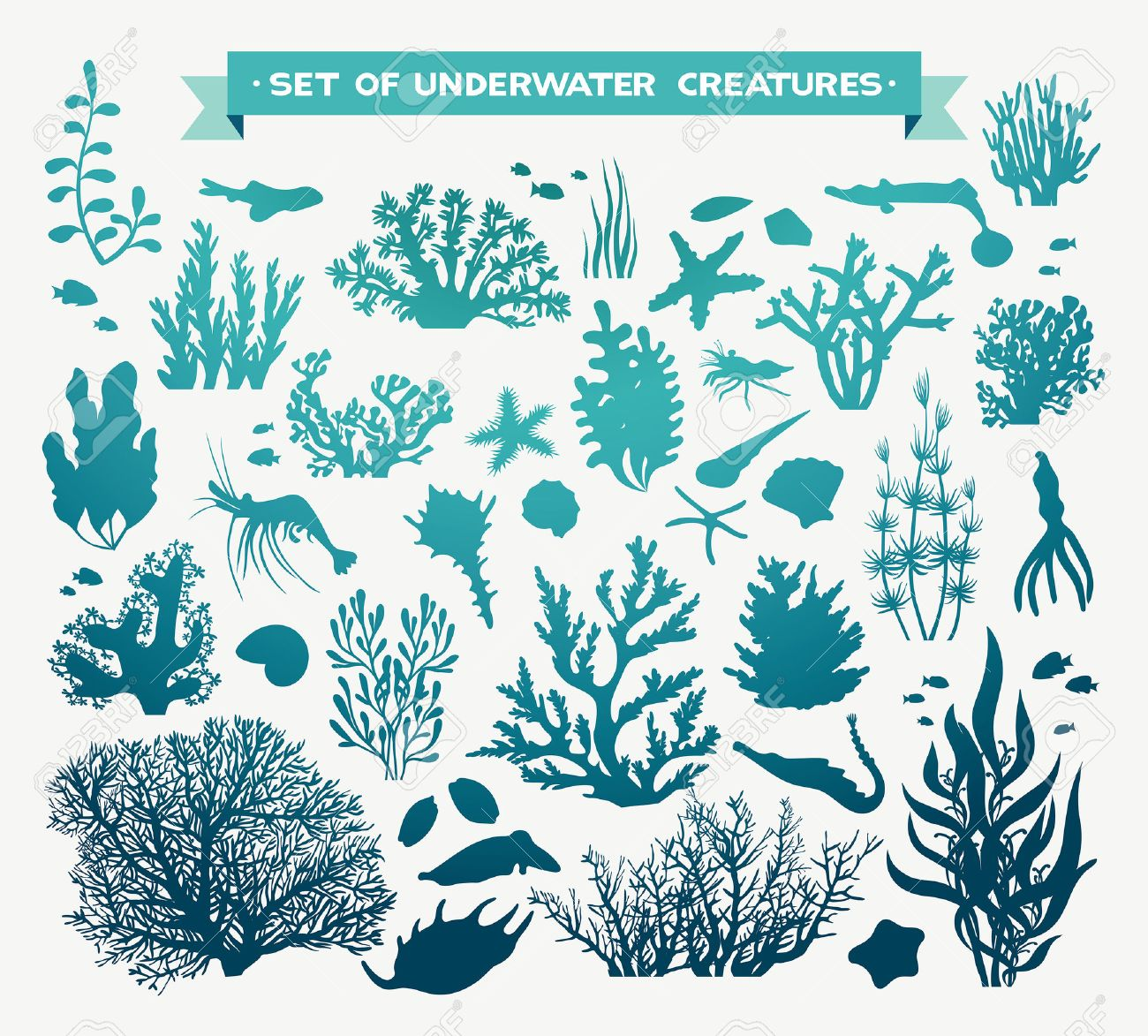 set of sea animals - coral, fish, shrimp, seashells and starfish. Underwater ocean creatures on a white background. - 51045074