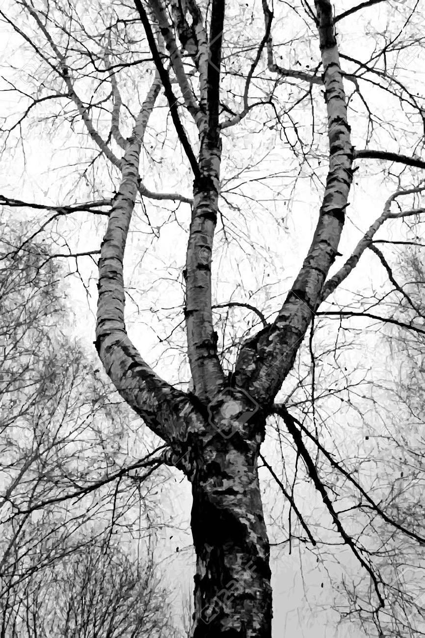 tronc bouleau interieur. latest cration avec whit wood with tronc