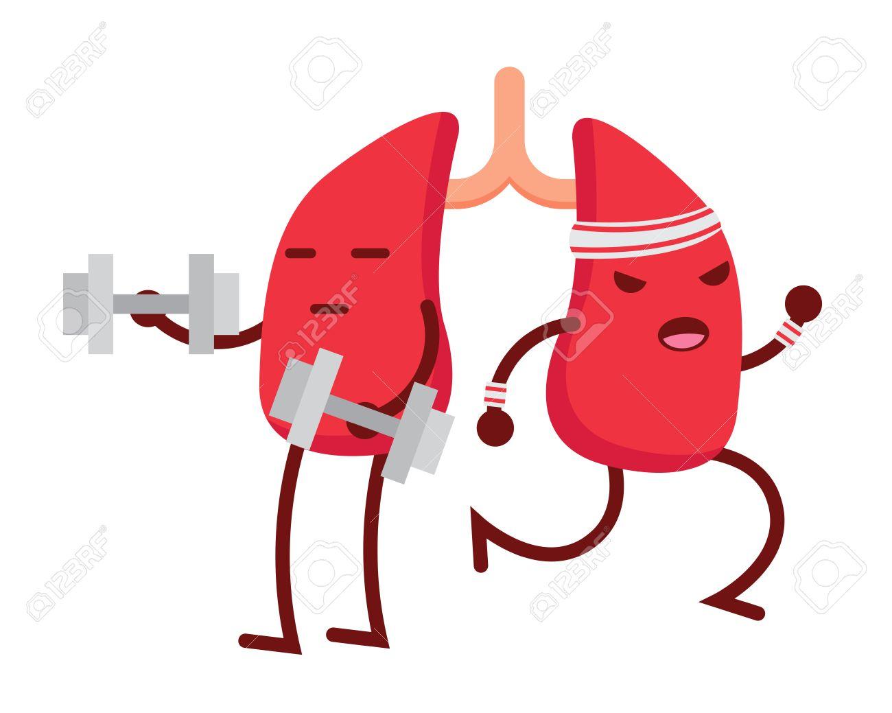 Saludable Feliz Y Linda Anatomía Humana Ilustración Dibujos Animados ...