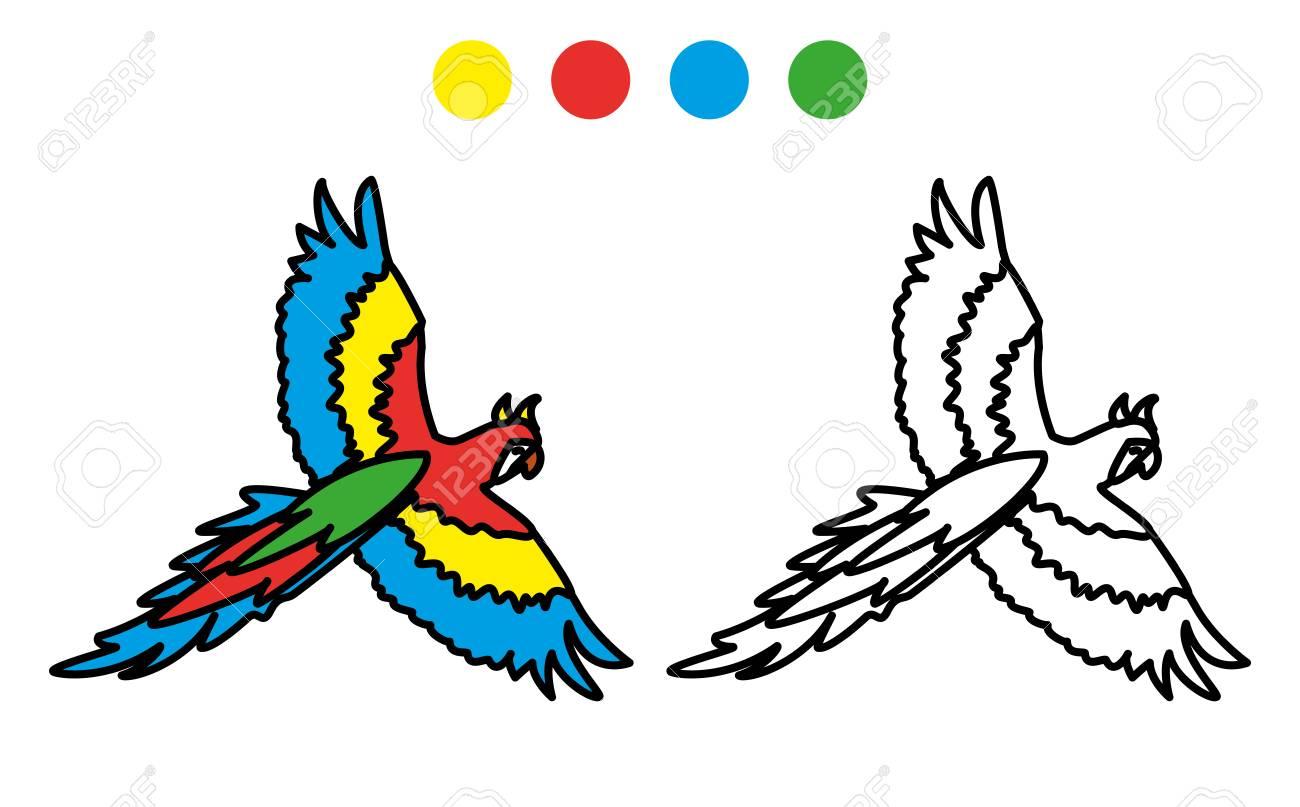 Foto De Loro Para Colorear Divertido, Ilustración Vectorial