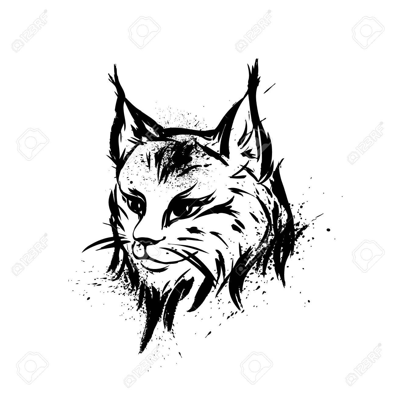 Vector lynx wild cat predator hand drawn black and white stylized