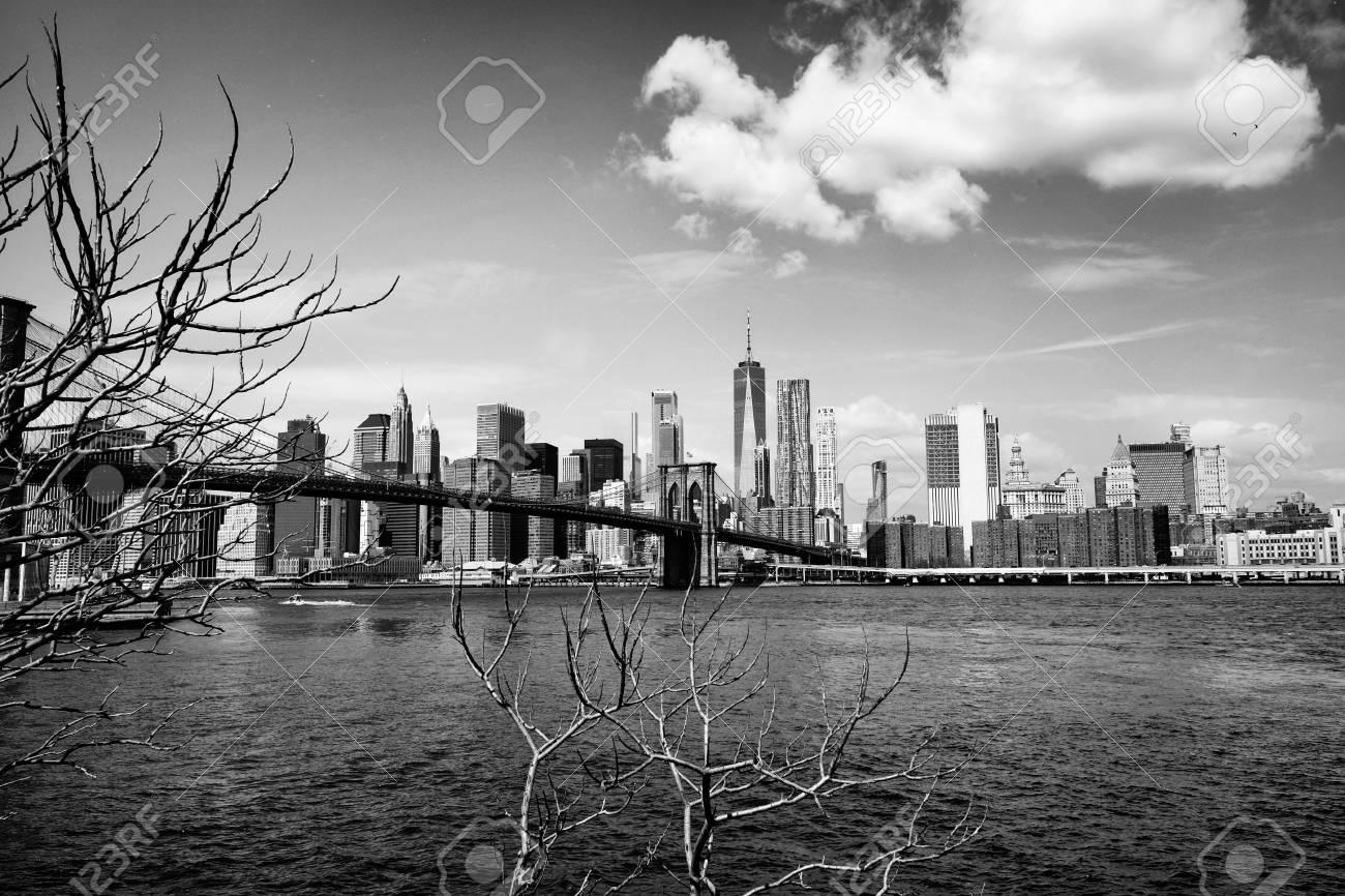 Brooklyn bridge with new york city skyline panoramic spring view