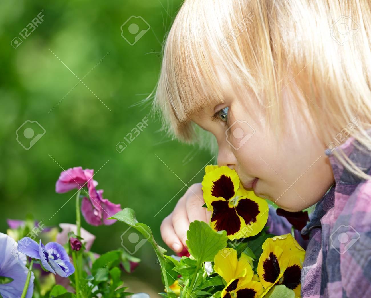 Fleurs Odorantes Petite Fille Dans Un Jardin Banque D\'Images Et ...
