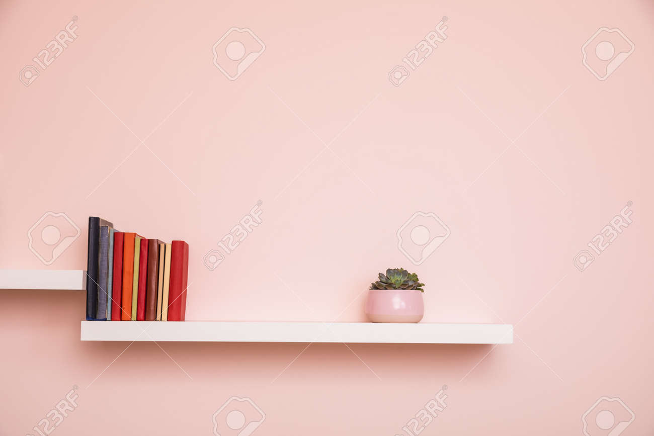 Simple white shelves on pale pink colored wall with books and succulent in pink pot. No titles shown on books - 164972924