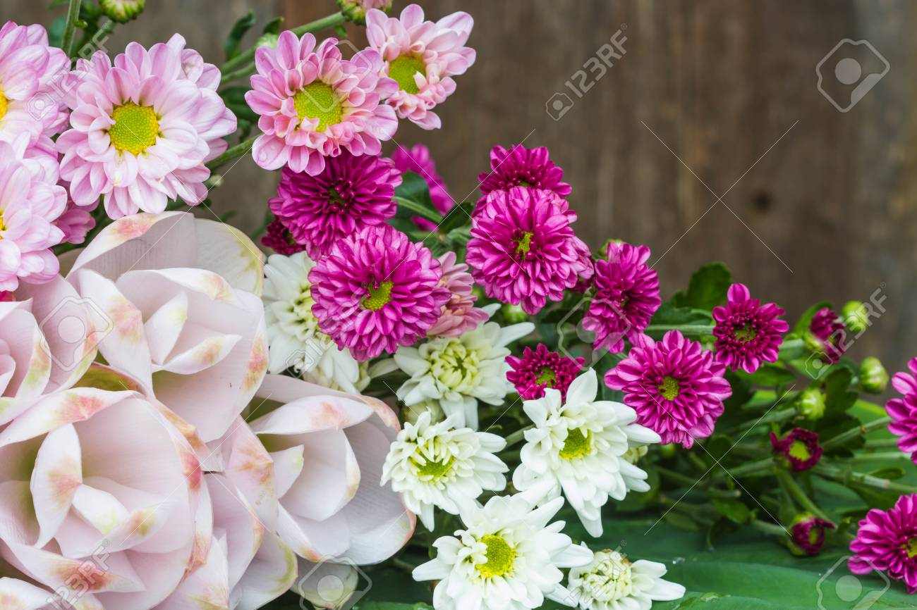 all flowers on wood background Stock Photo - 62383038