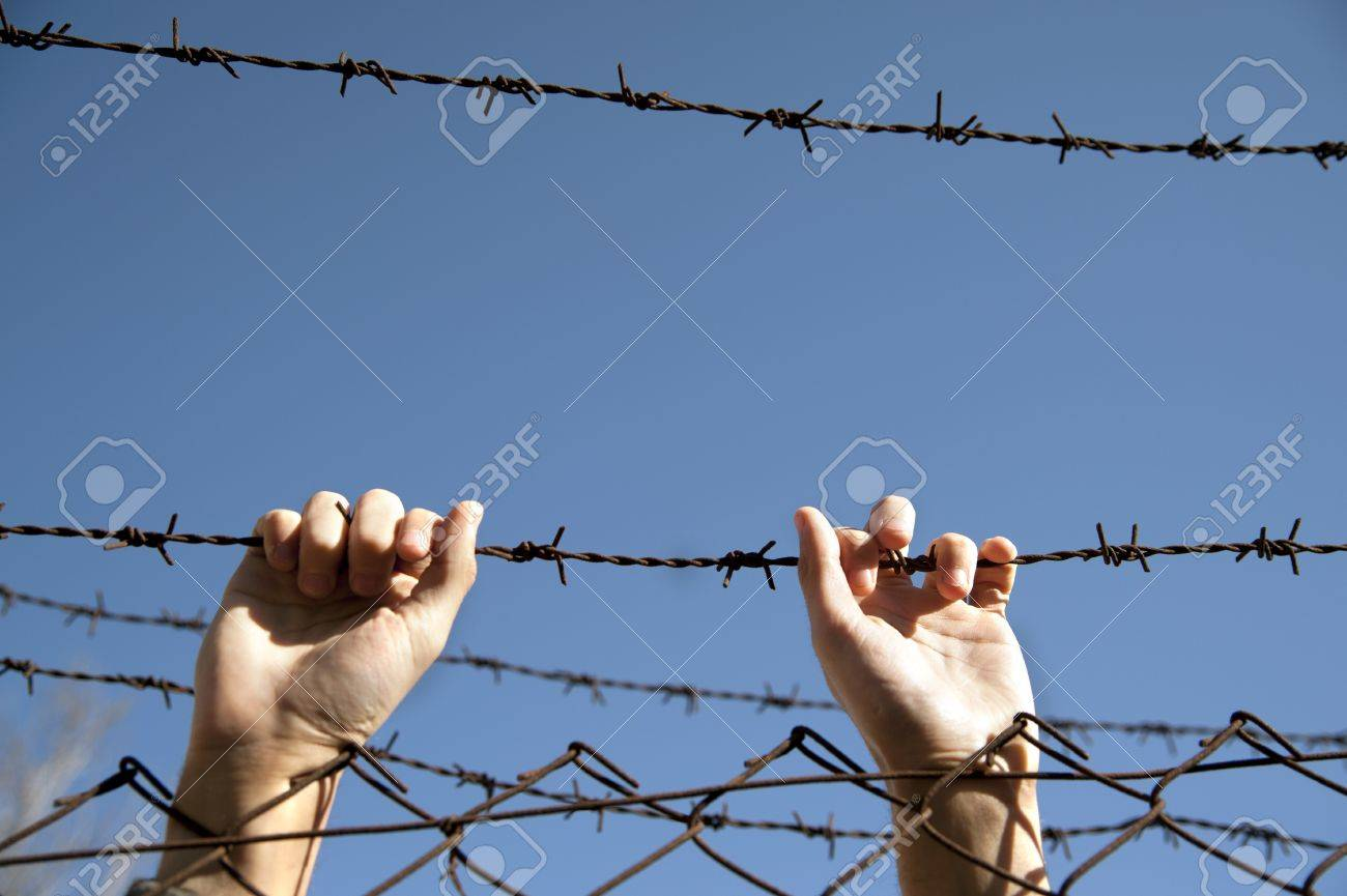 hands reach toward freedom through the barbed wire Stock Photo - 13747253