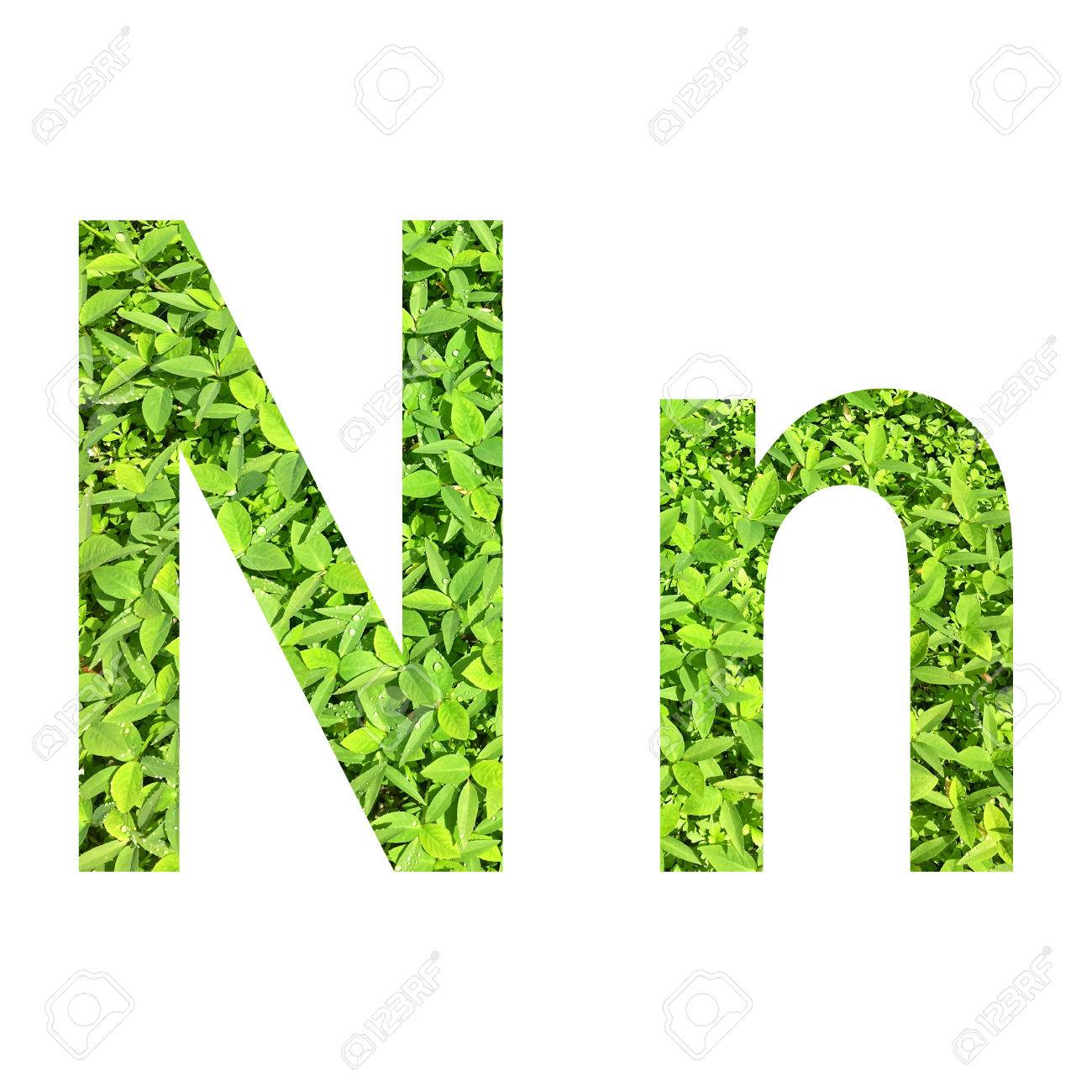 English Alphabet N.n Made From...