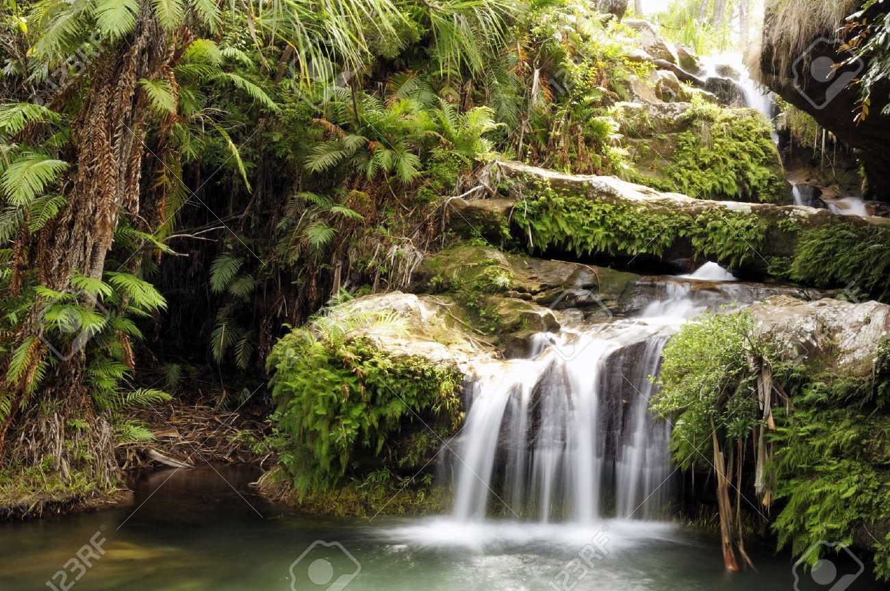 Rainforest Waterfall At National Park. Madagascar Stock Photo ...