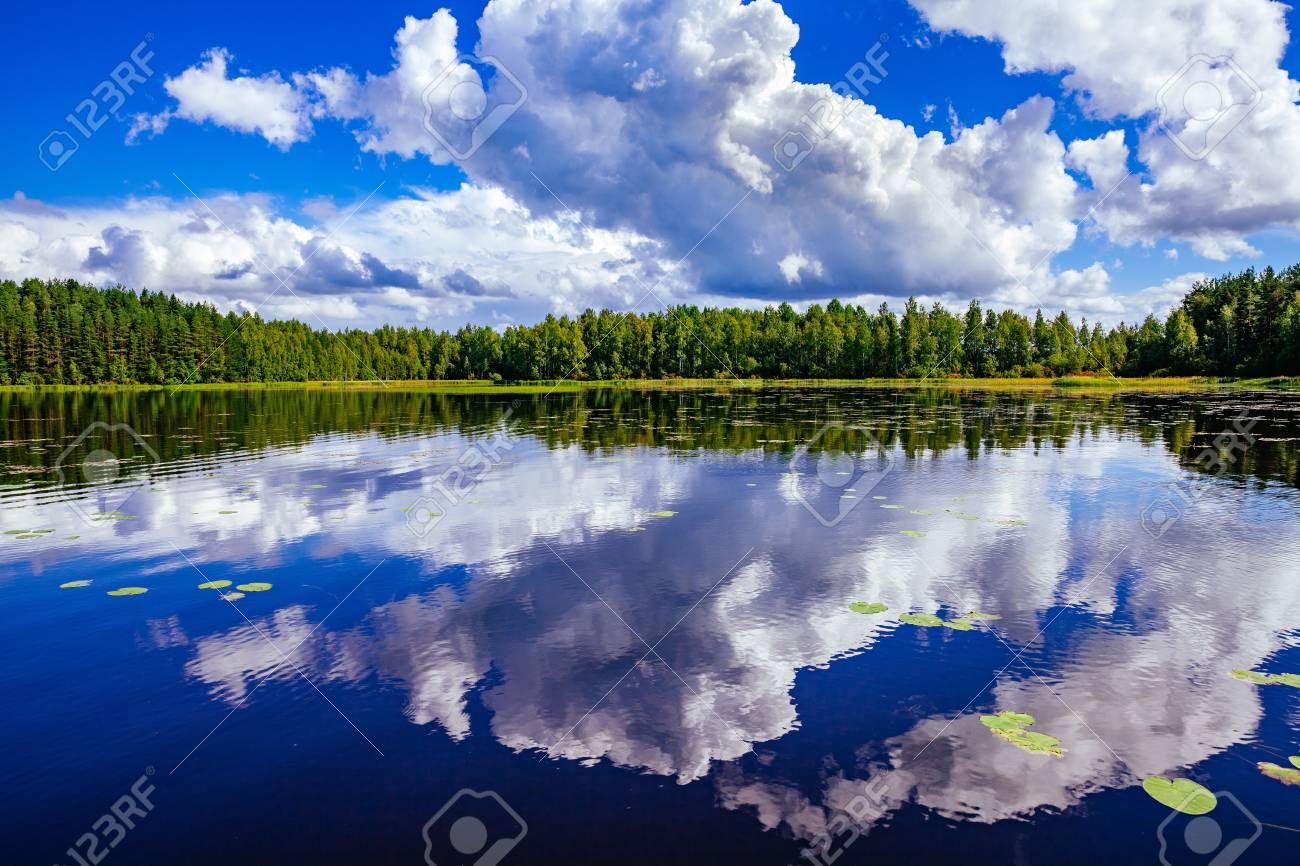 lake landscape at summer in rural finland ロイヤリティーフリーフォト
