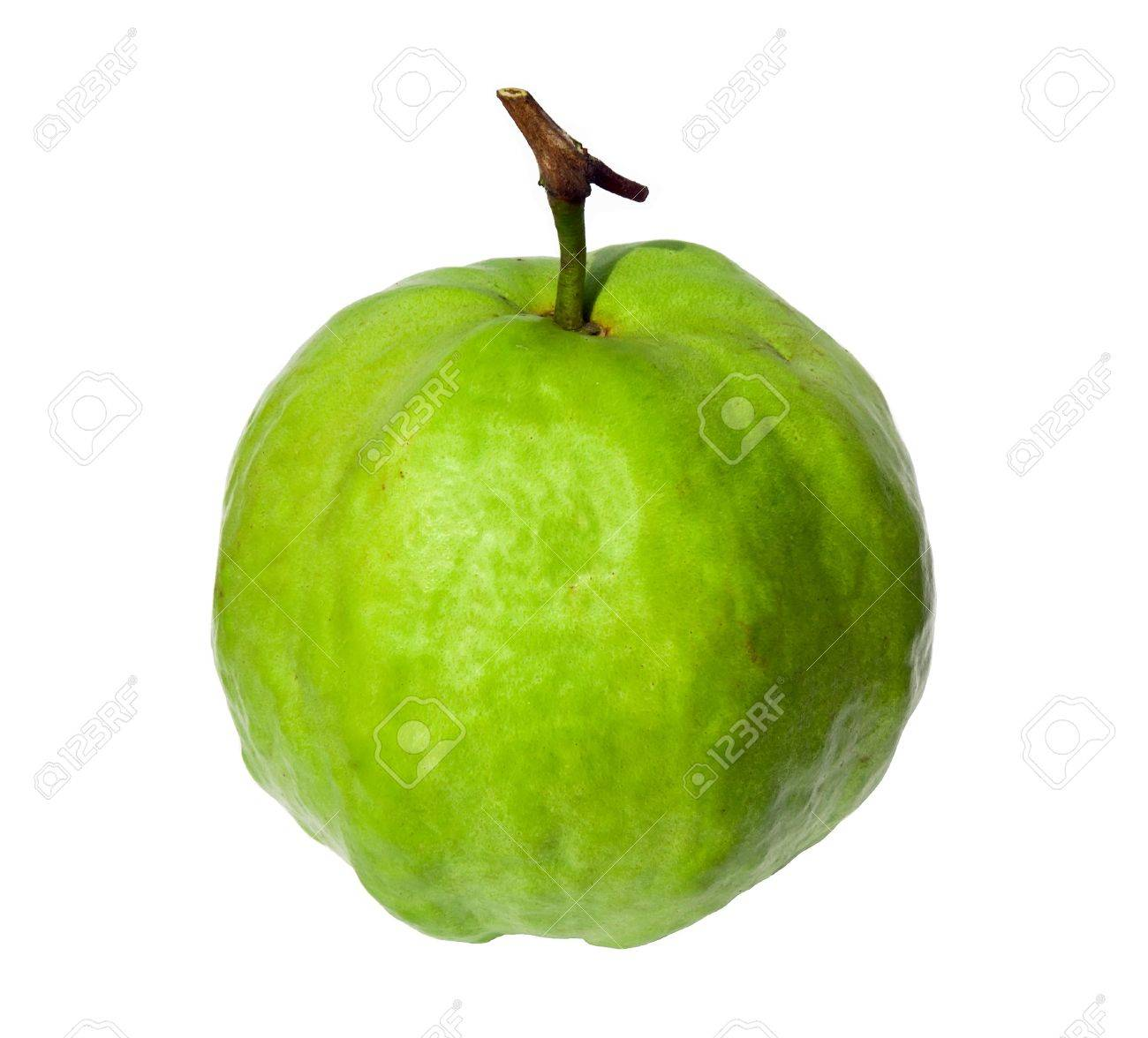 guava fruit images u0026 stock pictures royalty free guava fruit