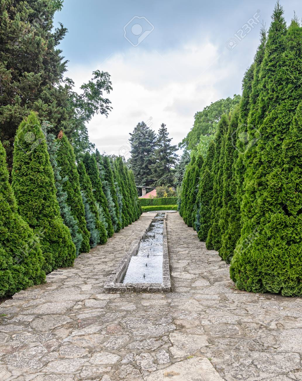 Botanical Garden With Green Pine Trees And Water Decorative Fountains