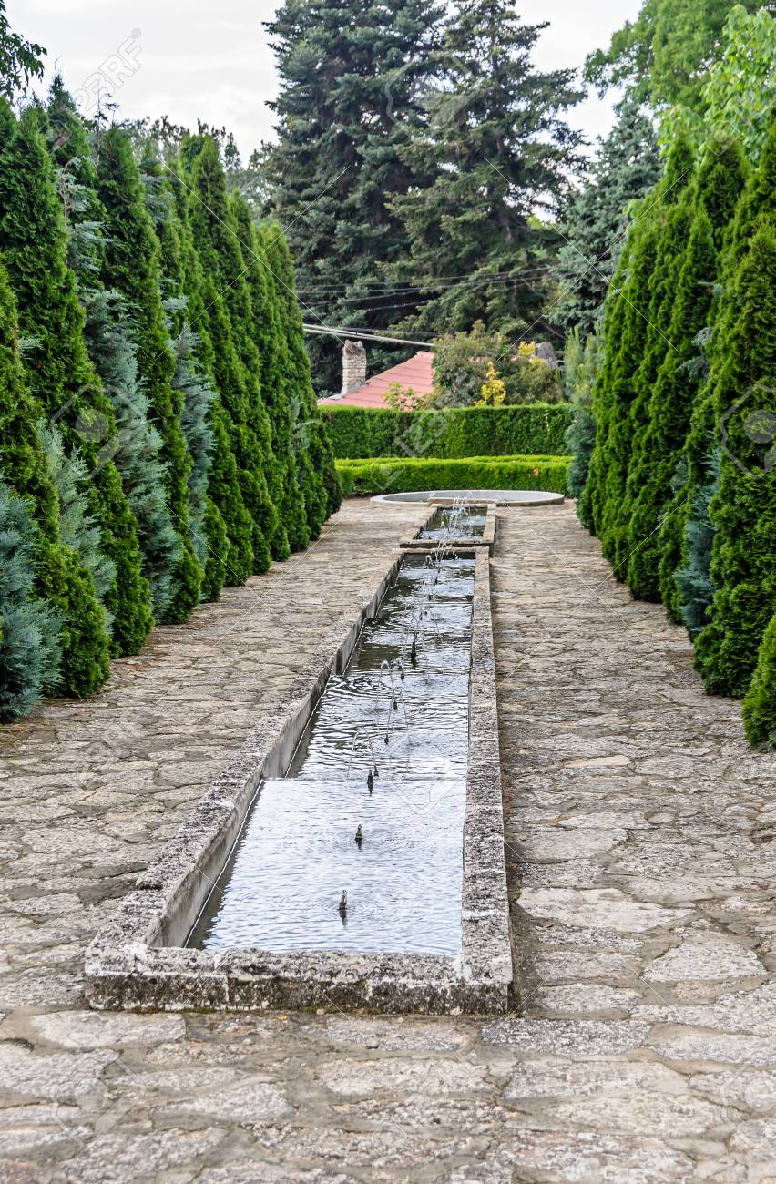 Botanical Garden With Green Pine Trees And Water Decorative ...