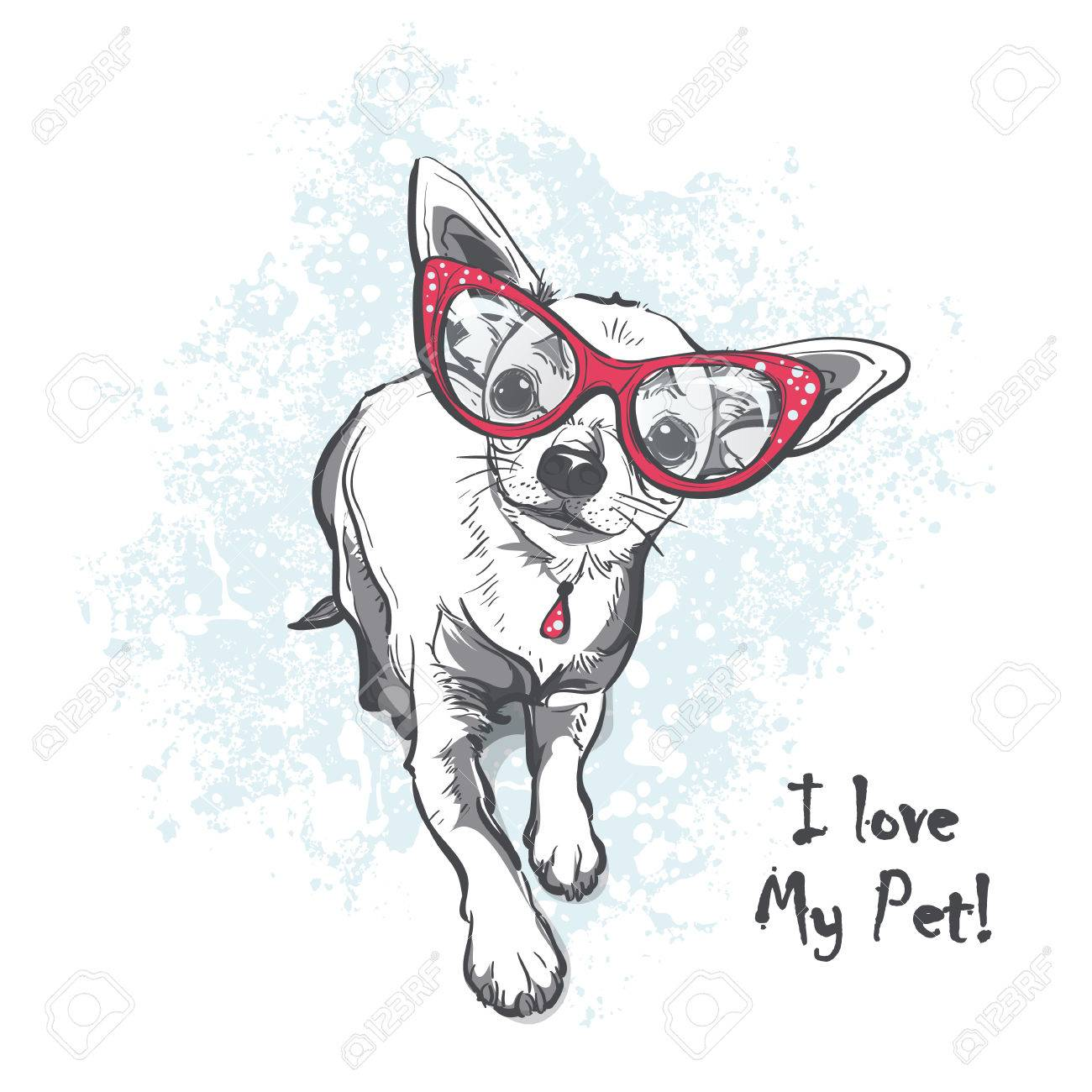 Funny puppy chihuahua wearing glasses  Contour cartoon illustration