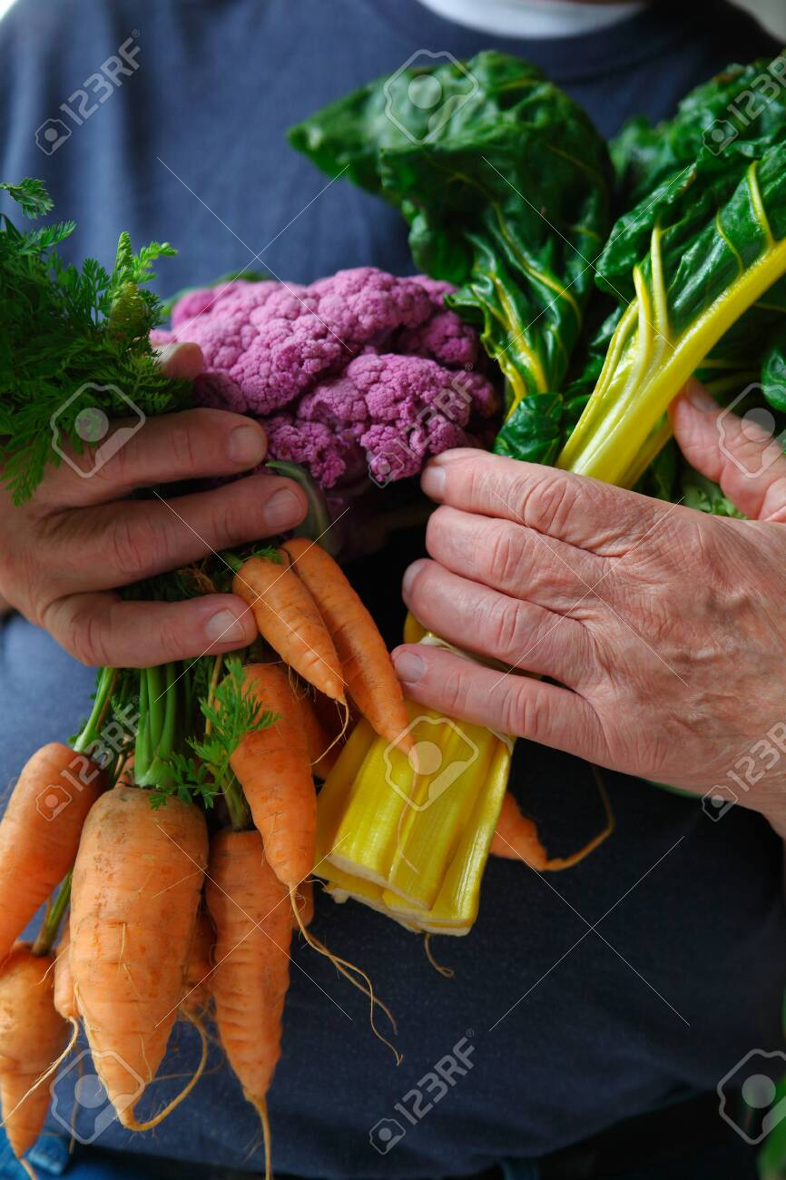 Older man with an armful of fresh Swiss chard, carrots and cauliflower from a farmers market - 141537933