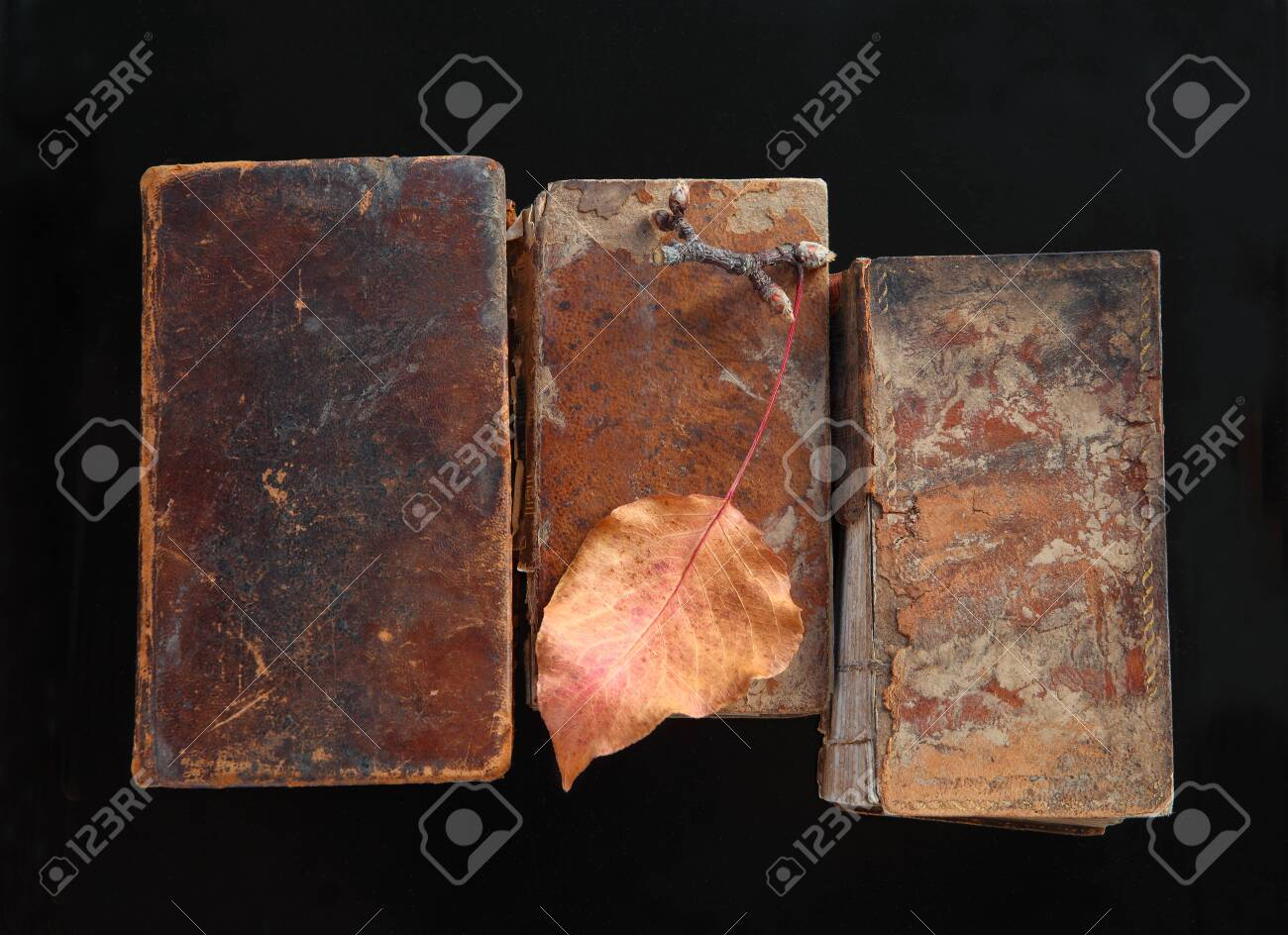 Crumbling old books with an autumn leaf on black - 141338933