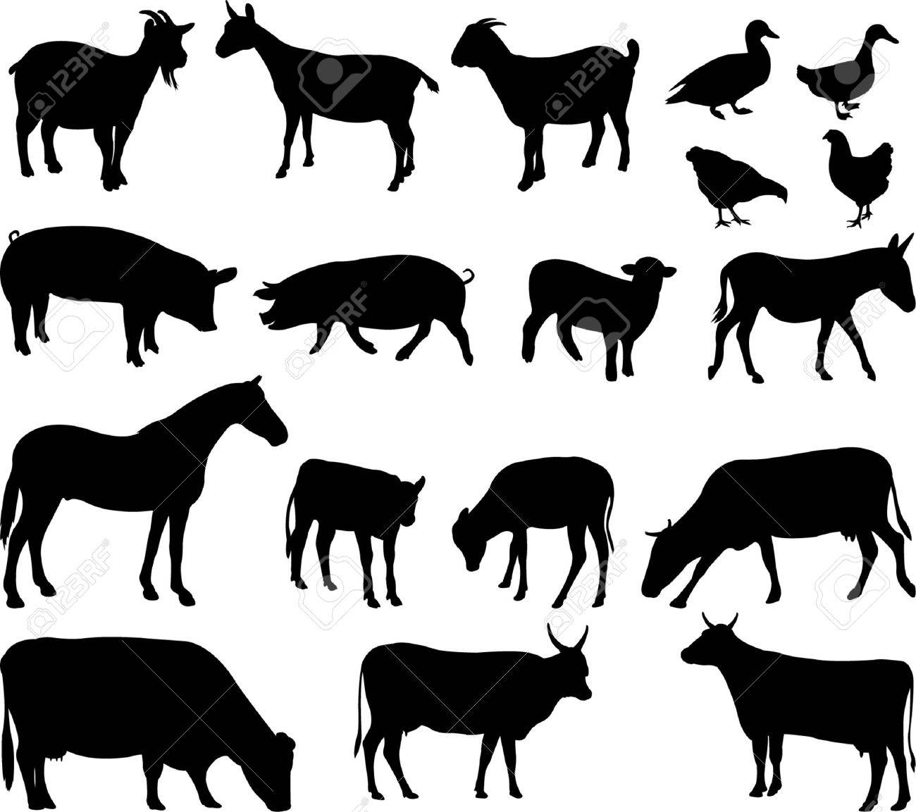 farm animals - vector Stock Vector - 5547534