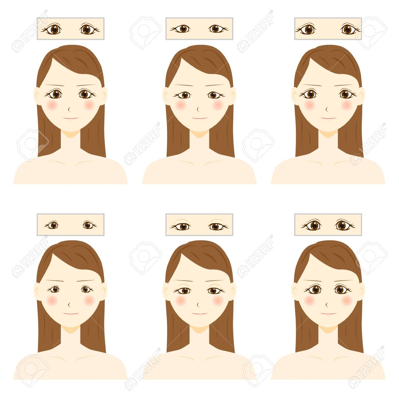 Eye shapes and types. Various female eye shapes. - 153511971