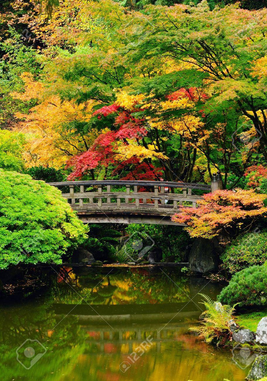 Schöner Garten Mit Brücke Und Im Herbst Reflexion über Wasser Standard Bild    10522638