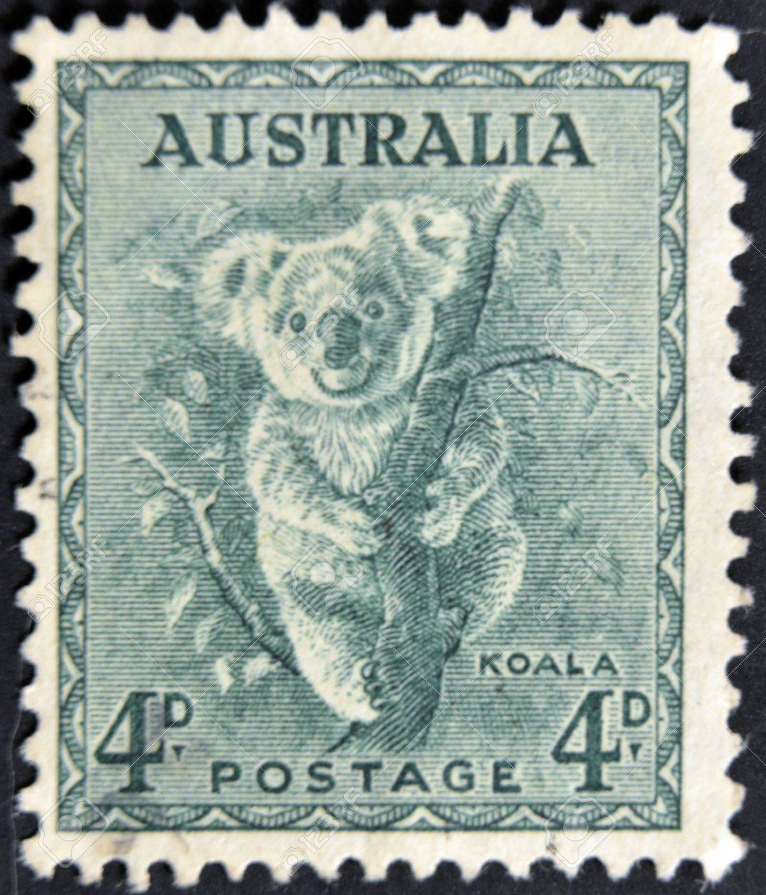 AUSTRALIA - CIRCA 1937: stamp printed by Australia, shows koala, circa 1937 Stock Photo - 11439126