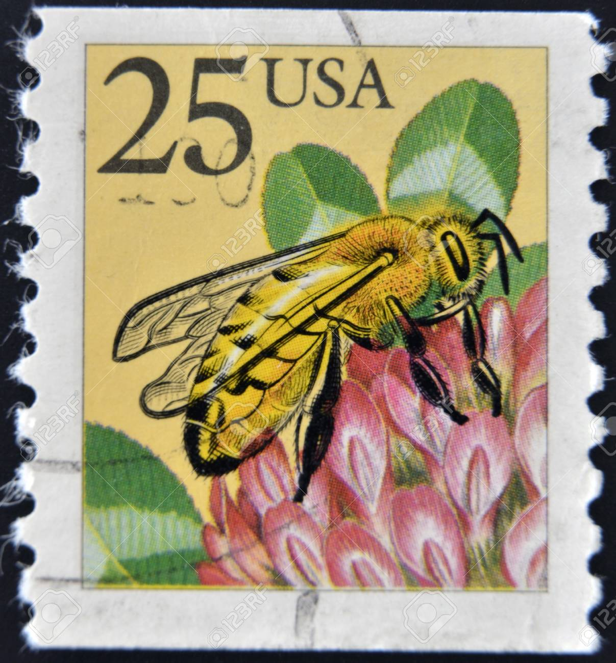 USA - CIRCA 1988: A stamp printed in the USA, shows the Western honey bee (Apis mellifera), circa 1988 Stock Photo - 12464759