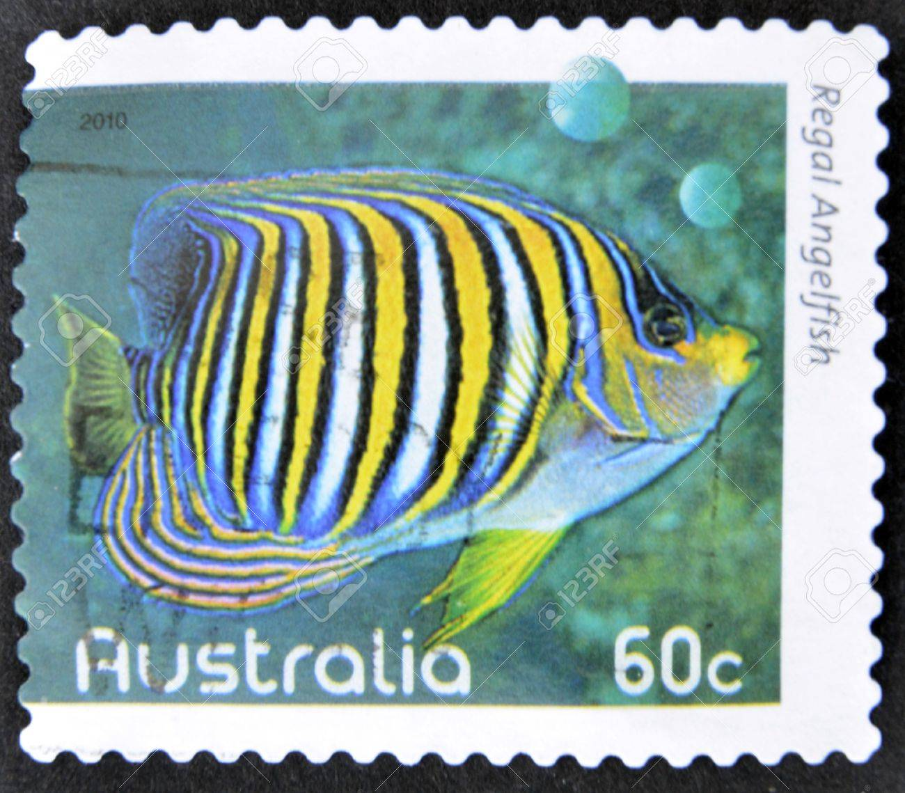AUSTRALIA - CIRCA 2010: A stamp printed in Australia shows an image of regal angelfish coral faith, inventive, circa 2010 Stock Photo - 14596823