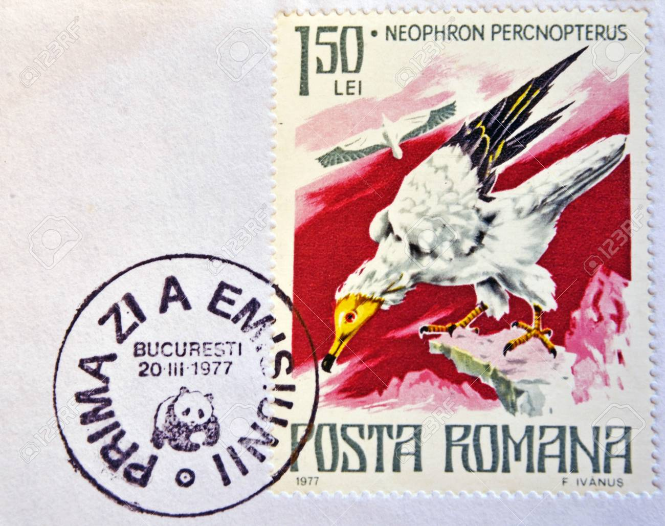 ROMANIA - CIRCA 1977: A stamp printed in Romania shows Egyptian vulture, circa 1977.  Stock Photo - 14596905