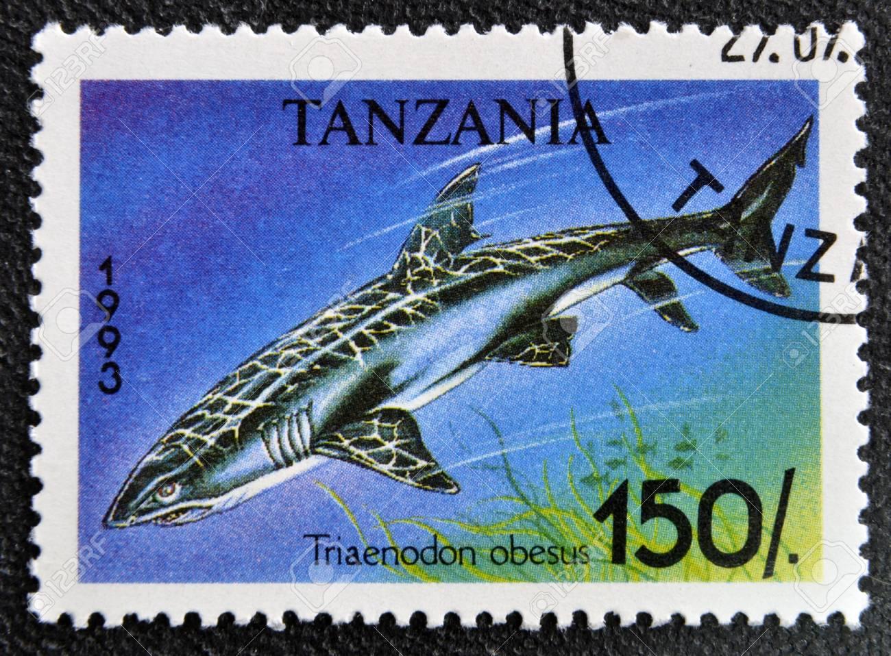 TANZANIA - CIRCA 1993: A stamp printed in Tanzania shows Whitetip reef shark, Triaenodon obesus, circa 1993 Stock Photo - 16959495