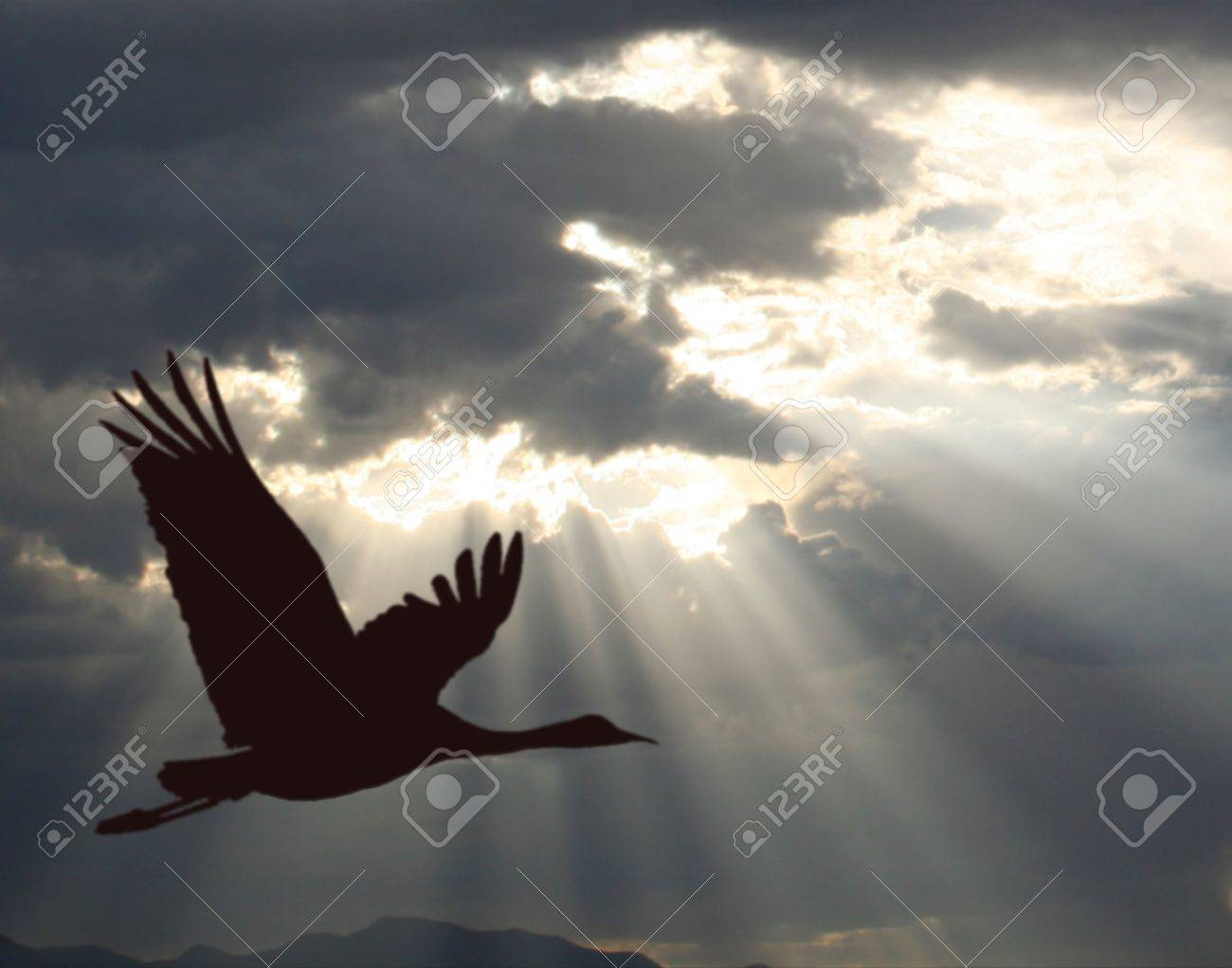 It Was Twilight And Sandhill Cranes >> A Lone Sandhill Crane Glides Across A Twilight Sky As Crepuscular