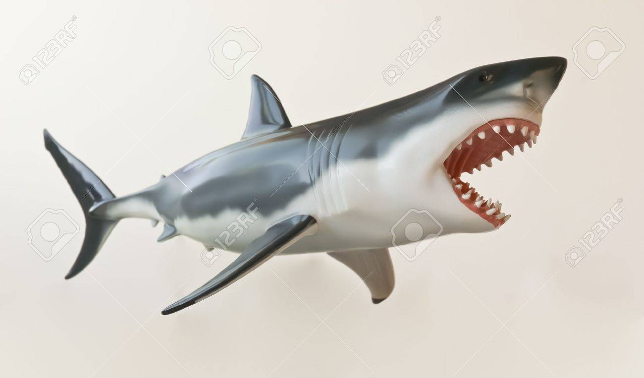 A Model of a Great White Shark Isolated Against White Stock Photo - 10425169