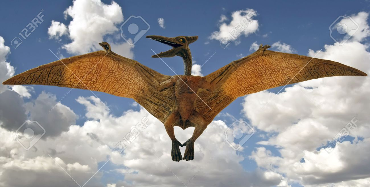 A Pteranodon Pterosaur Glides in a Blue Sky with Clouds - 12268877