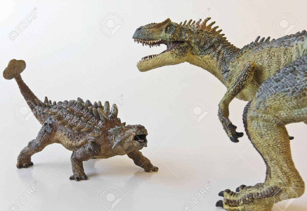 Ankylosaurus and Allosaurus battle it out against a white background - 12268881
