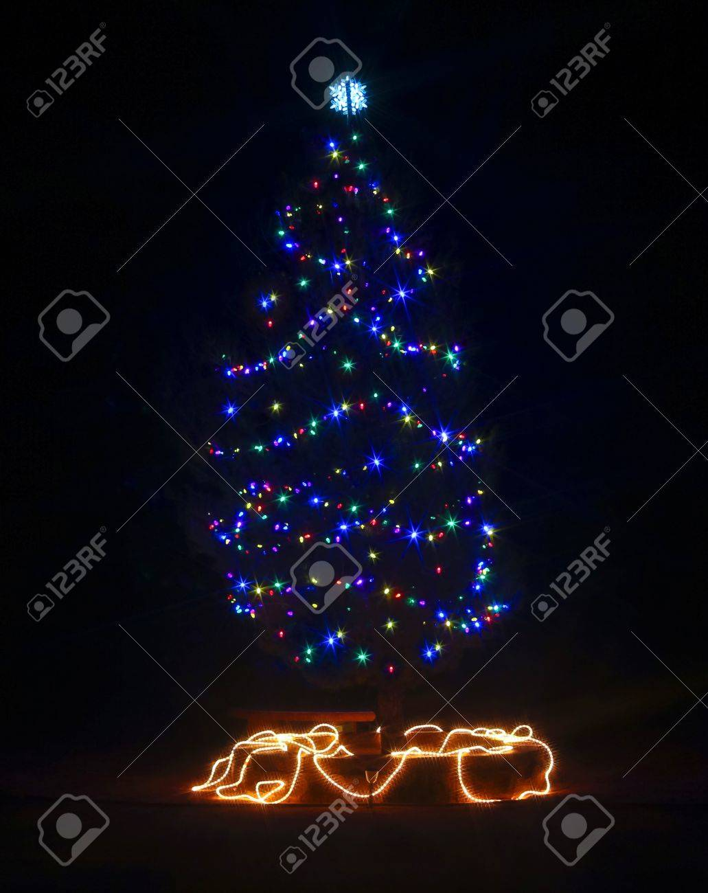 An outdoor christmas trees with electric lights on a very dark an outdoor christmas trees with electric lights on a very dark night stock photo 16726579 aloadofball Image collections