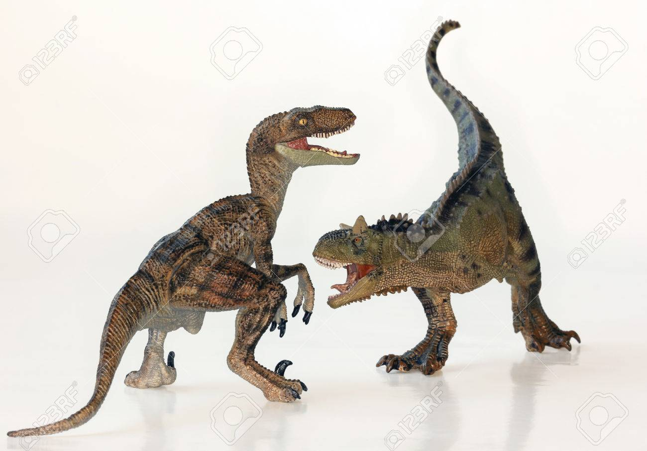 A Battle Between Carnotaurus and Velociraptor Dinosaurs Against White - 25361853