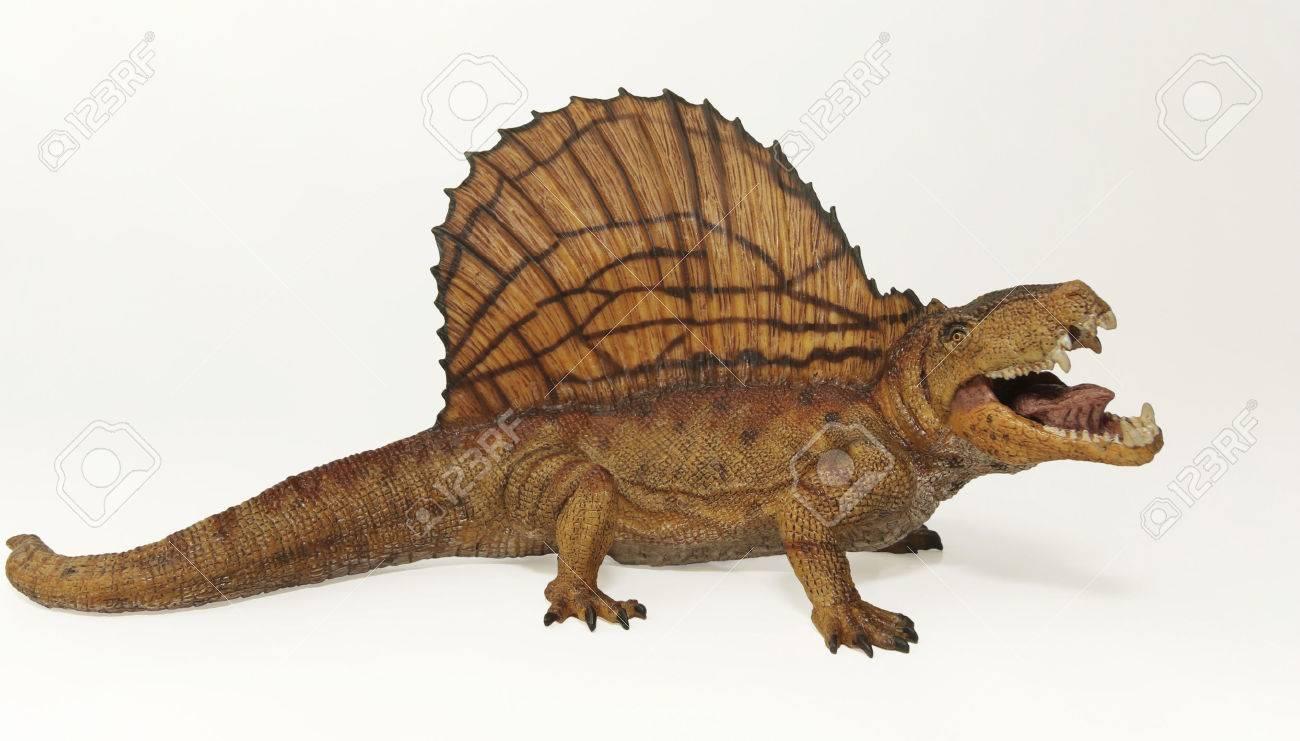 A Dimetrodon, a Predatory Mammal-like Reptile from the Permian - 27698364