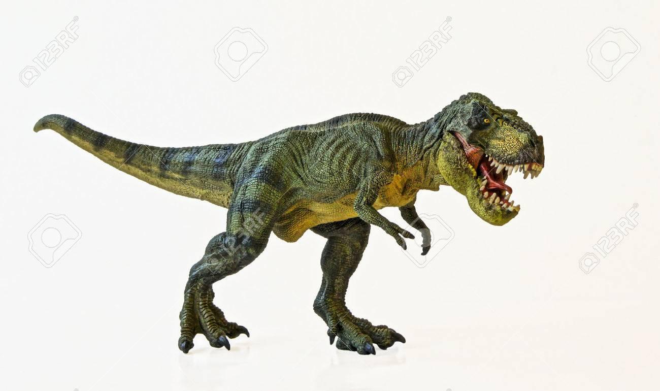 A Tyrannosaurus Rex Hunts Against a White Background - 29842313
