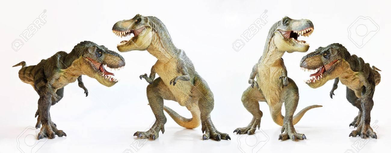A Tyrannosaurus Rex Foursome Against a White Background - 31768001