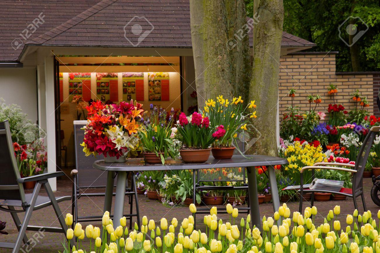 variedad de flores en macetas en exhibicin en la tienda jardines keukenhof holanda foto