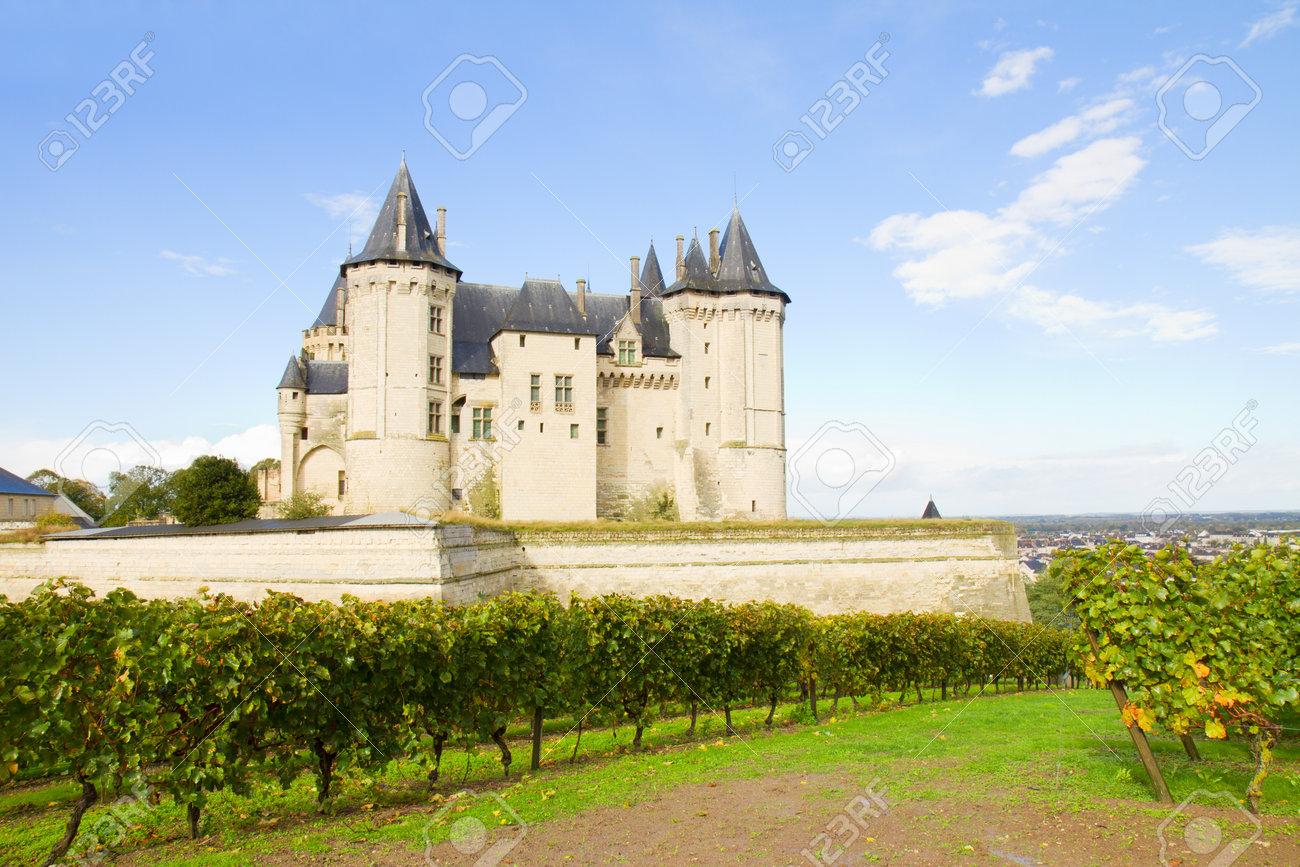 Saumur Castillo Y Viñedos En El Valle Del Loira Francia Fotos Retratos Imágenes Y Fotografía De Archivo Libres De Derecho Image 16507530