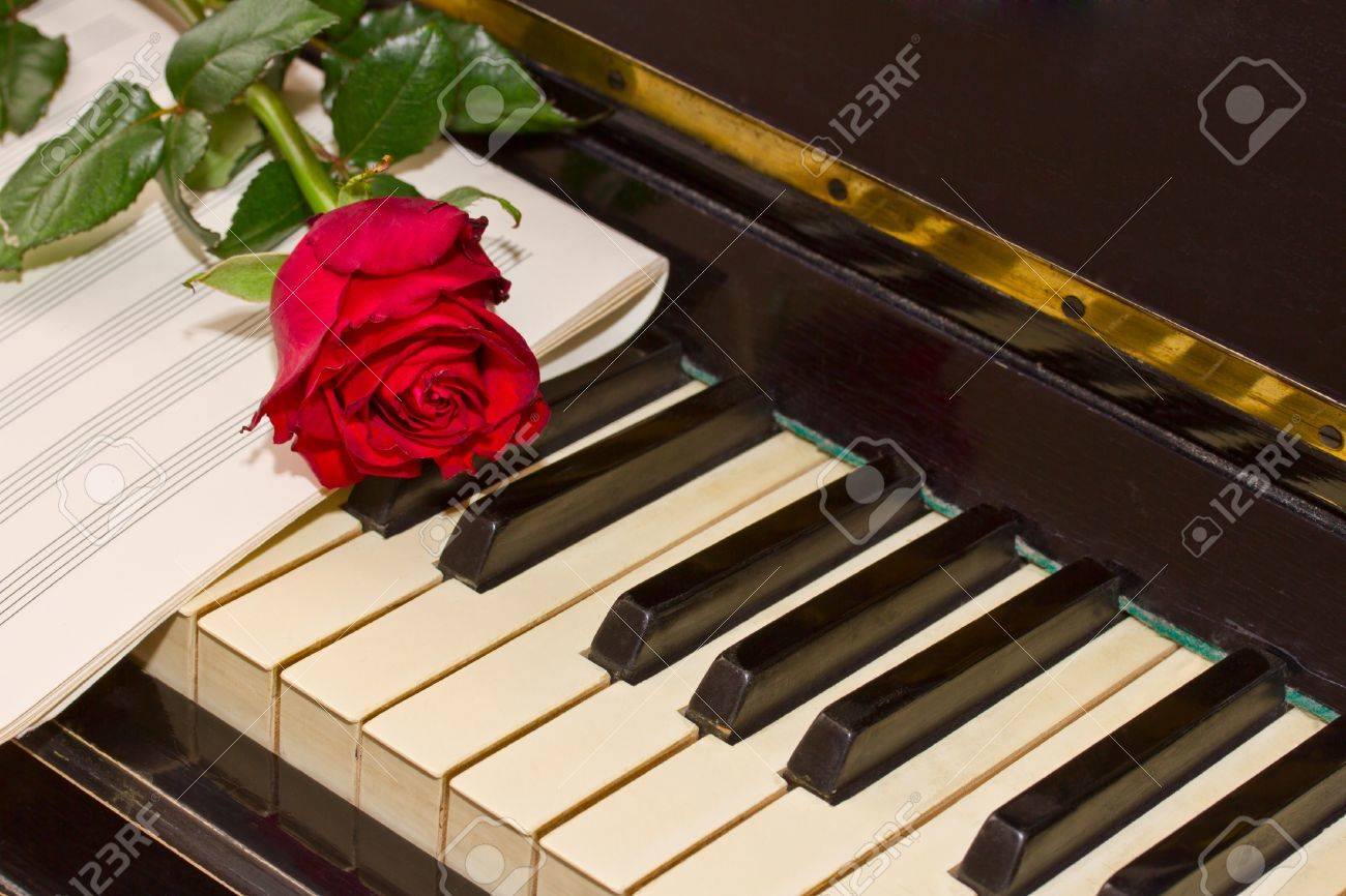 Rose With Notes Paper On Vintage Piano Stock Photo Picture And