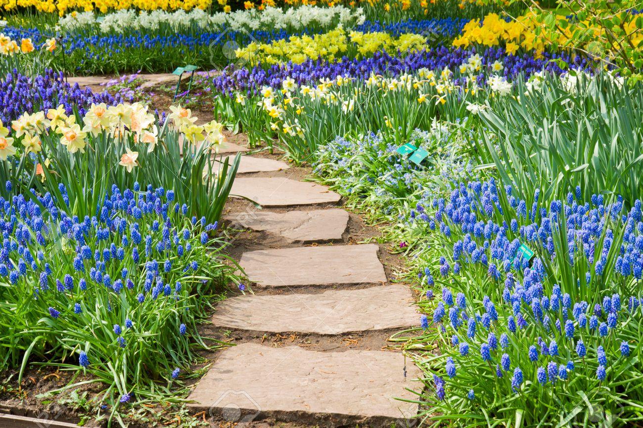 enroulement en jardin de fleurs au printemps chemin de pierre