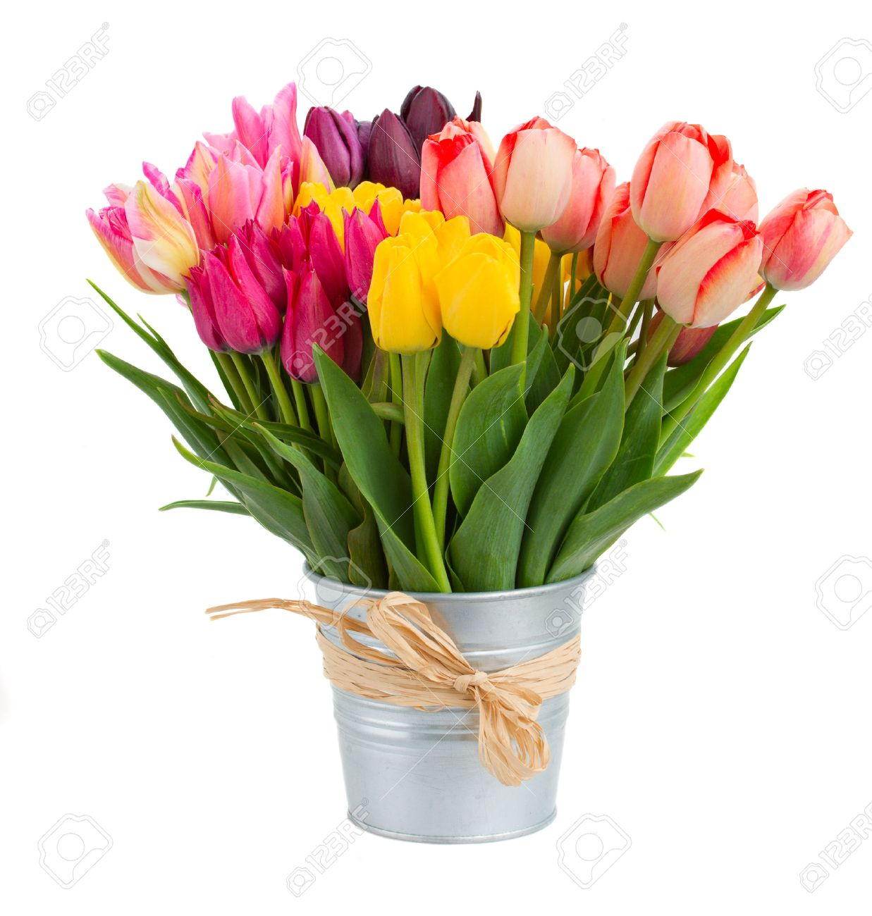 Bunch of spring tulips flowers in metal pot isolated on white - 24865153