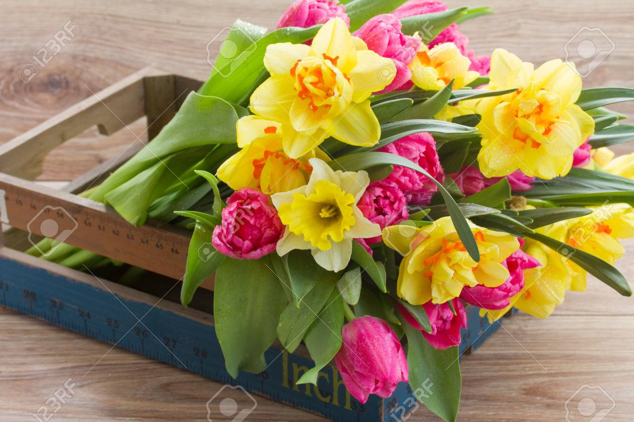 Banque d\u0027images , bouquet de tulipes au printemps et de la jonquille fleurs  en caisse en bois