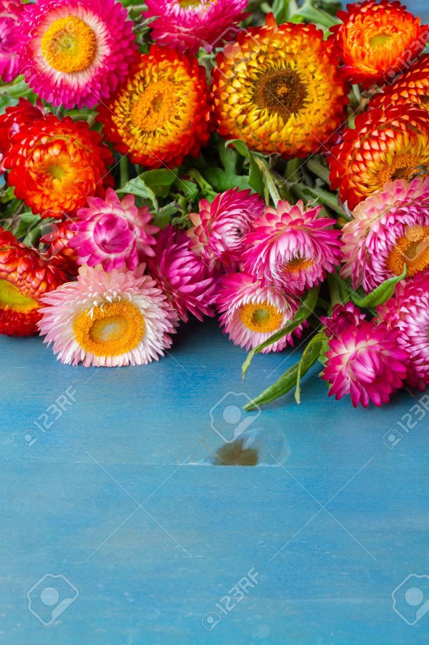 Blue everlasting flower images flower wallpaper hd bouquet of everlasting flowers bouquet on blue table with copy bouquet of everlasting flowers bouquet on izmirmasajfo