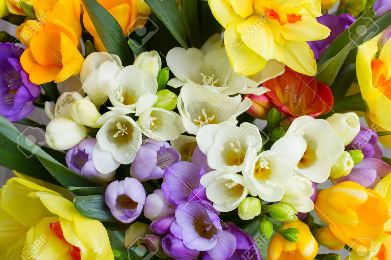 Flowers bouquet stock photos royalty free flowers bouquet images bunch of fresh spring freesea flowers close up izmirmasajfo