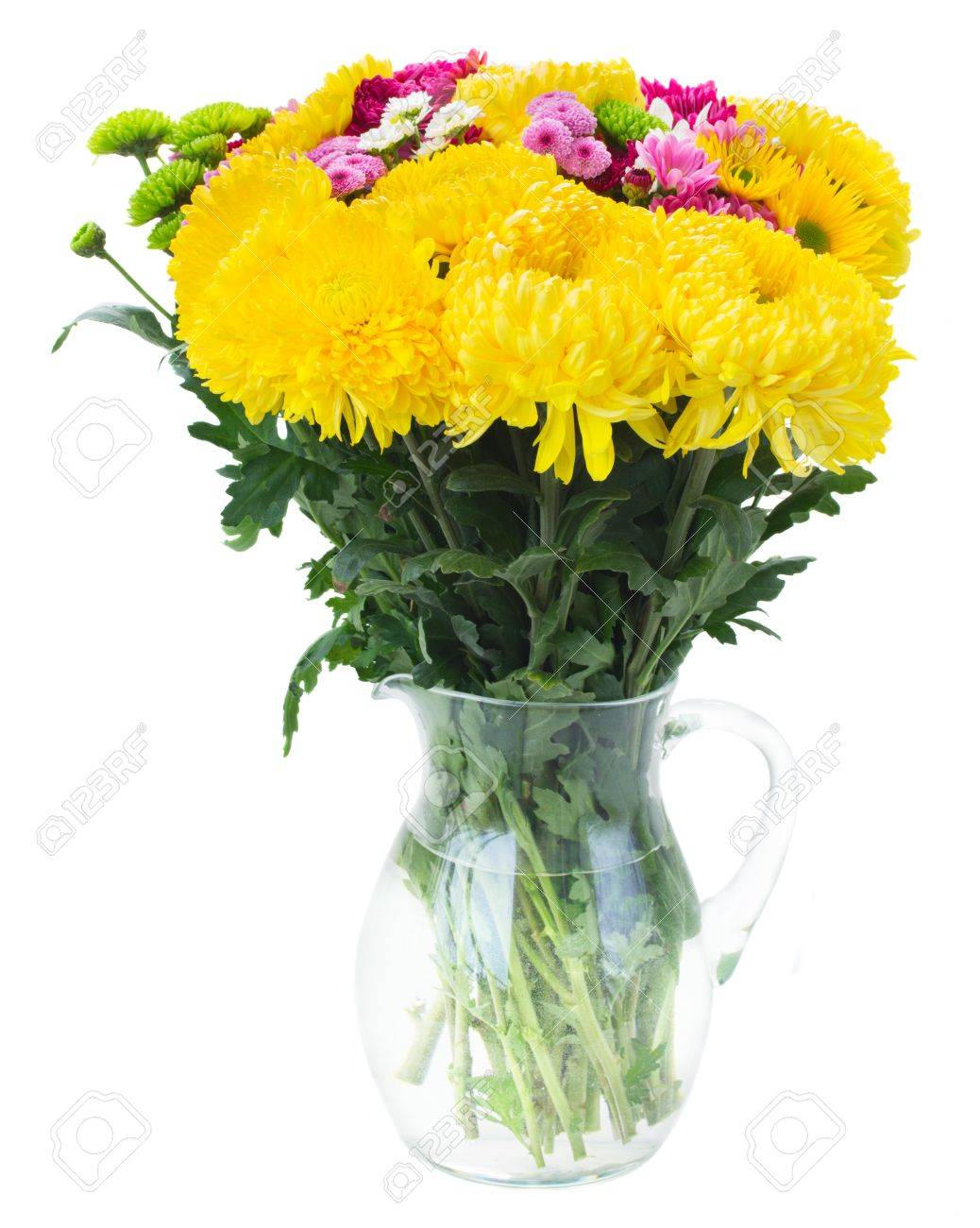 Yellow red and pink fresh mum flowers bouquet in glass vase stock stock photo yellow red and pink fresh mum flowers bouquet in glass vase isolated on white background izmirmasajfo